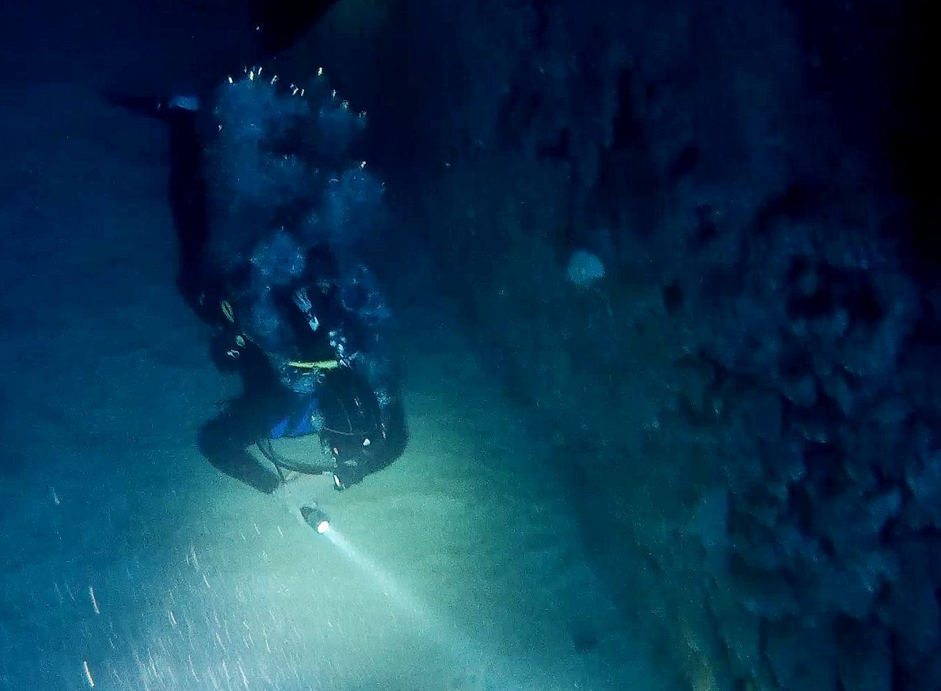 billinghurst gozo diving